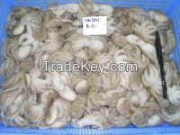 dried and frozen shrimps