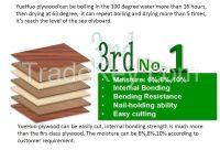 plywood no Formaldehyde