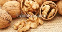 Walnut Kernels , Natural Unshelled Walnuts walnuts in shell or kernel