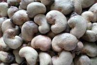 High Quality Nigerian Cashew Nut