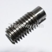 Customized Stepped Motor Worm Gears Assembly