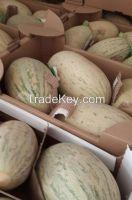 Melons, fresh