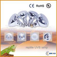 Mercury Reflector Reptile