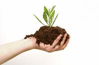 Organic Fertilizer for Agricultural Land