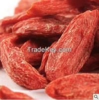 Ning Xia fresh dried goji