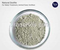 Natural Zeolite as Detergent additive