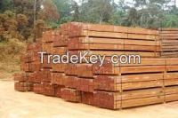 Specialised in Tropical Hardwood ( Greenheart, Purpleheart, Kabukalli, Tauroniro, Wallaba, Mora, Shibadan) & GH piles & charcoal