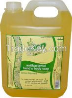 Antibacterial Hand and Body Soap 4000ml (4 Liters)