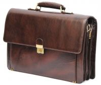 HIDEMARK STYLISH LEATHER LAPTOP BAG WITH DOCUMENT ORGANIZER