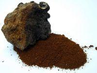 Siberian Chaga Extract Powder
