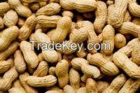 Pine Nuts, Peanuts, Dried Apricot, Prunes, Golden Raisins, Sultana\'s & Meat