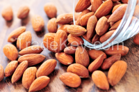 High Quality Raw and Roasted Almond nuts  with Cheap Price