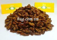 Dried silkworm pupae high quality
