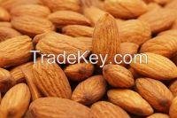 Almond nuts , Cashew nuts , Macadamia nuts