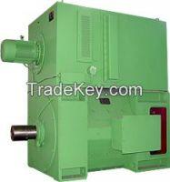 D Series Large Size DC motor