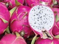 Dragon fruit white/red flesh new crop/Ms.Hanna