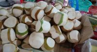 Fresh Coconut Diamond Shape/ Fresh Coconut Vietnam supplier Sophia +84987364651