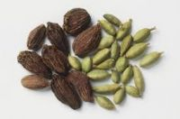 Top Quality Natural  Dry Cardamom for Sale of VIET NAM ( Anna +84988332914)