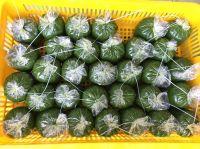 Cassava leaf whatsapp +84 947 900 124