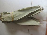 Bamboo leaf whatsapp +84947 900 124