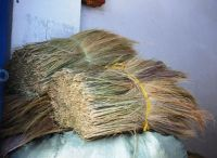 VIETNAM GRASS BROOM FOR SALE  (whatsapp: +84 938880463)