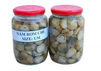 Canned mushroon/Straw mushroom/Whole and sliced shape/Ms.Hanna