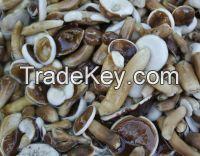 Frozen bolete mushroom/Vietnam special food/Ms.Hanna