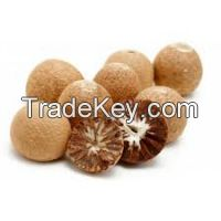 EXPORTING DRIED BETEL NUT FOR THE BEST PRICE ( Anna + 8498332914/Whatsapp)