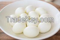Canned boiled quail eggs - Quail eggs without shell Whatsapp +84 947 900 124