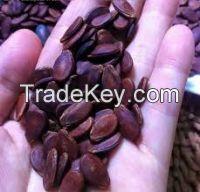 We are supply melon seeds( Anna +84988332914/Whatsapp)