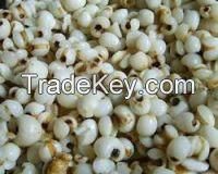 2018 -factory supplier coix seed in viet nam ( Anna +84988332914/Whatsapp)
