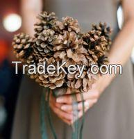 Pine Cone Christmas Trees WHATSAPP +84 947 900 124