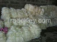 100% Natural Sisal Fiber of Kenyan Origin with Free Samples