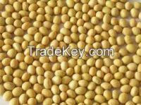 Custom Commodities LLC Non GMO Soybean Variety 389