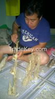 Agarwood and Oil,crafts,wood,Humotra agarwood