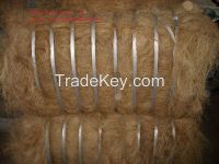 Coconut Fiber with high quality and cheap price