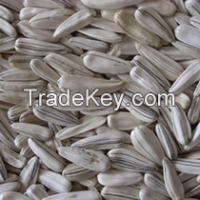 Hulled and Natural Sunflower Seeds Available