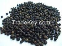 Dried Black Peper 500gl/ Black Pepper 550gl