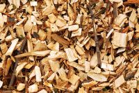 Best Wood Chips From Vietnam