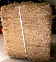 Sugarcane Bagasse Block - good quality