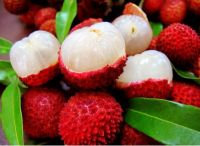 Lychee with Cheapest Price