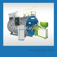 Multi-fuel Steam Boiler