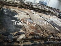 Quality 100% Wet and Salted Donkey Hides and Cow Hides