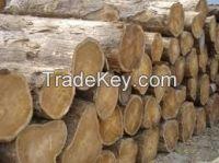 Kosso, doussie, teak, iroko, mahogany, aftrican hard wood, timber, logs