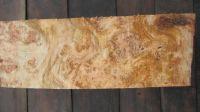 Poplar burl Lumber wood Pappel Maser Holz