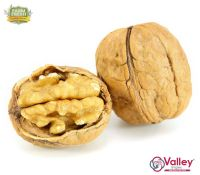 Walnut Kernals Organic Kashmiri Akhrot Giri Premium Grade