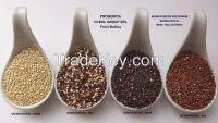 Organic royal quinoa and chia from Bolivia