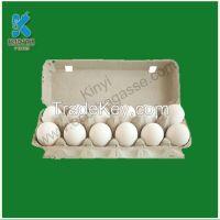 Bagasse Food Packaging trays