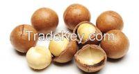 Organic Macadamia Nuts/