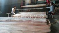 Natural wooden veneer/ Keruing, Gurjan veneer, Mersawa veneer, Bintangor veneer, Pine veneer, Okoume veneer, poplar veneer